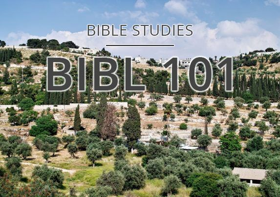 BIBL 101 – Genesis: A Promised Land for a Promised Time with Rabbi Tuly Weisz
